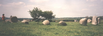 Athgreany Stone Circle with lone whitethorn tree